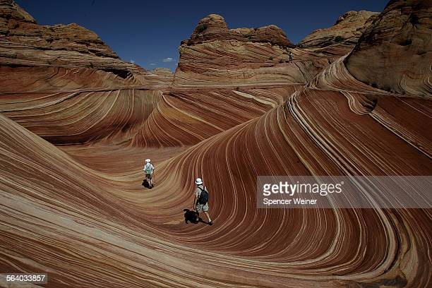 Hikers among the rock formations at 'the Wave' in the Coyote Buttes area of the Paria Canyon–Vermillion Cliffs Wilderness on the Utah/Arizona border...