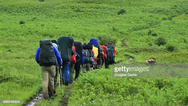 hikers climb the hill with full packs - monongahela national forest stock photos and pictures