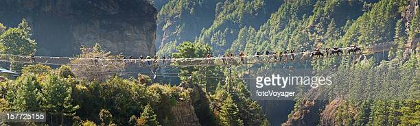 Les randonneurs crossing canyon Pont en corde Himalaya, Népal