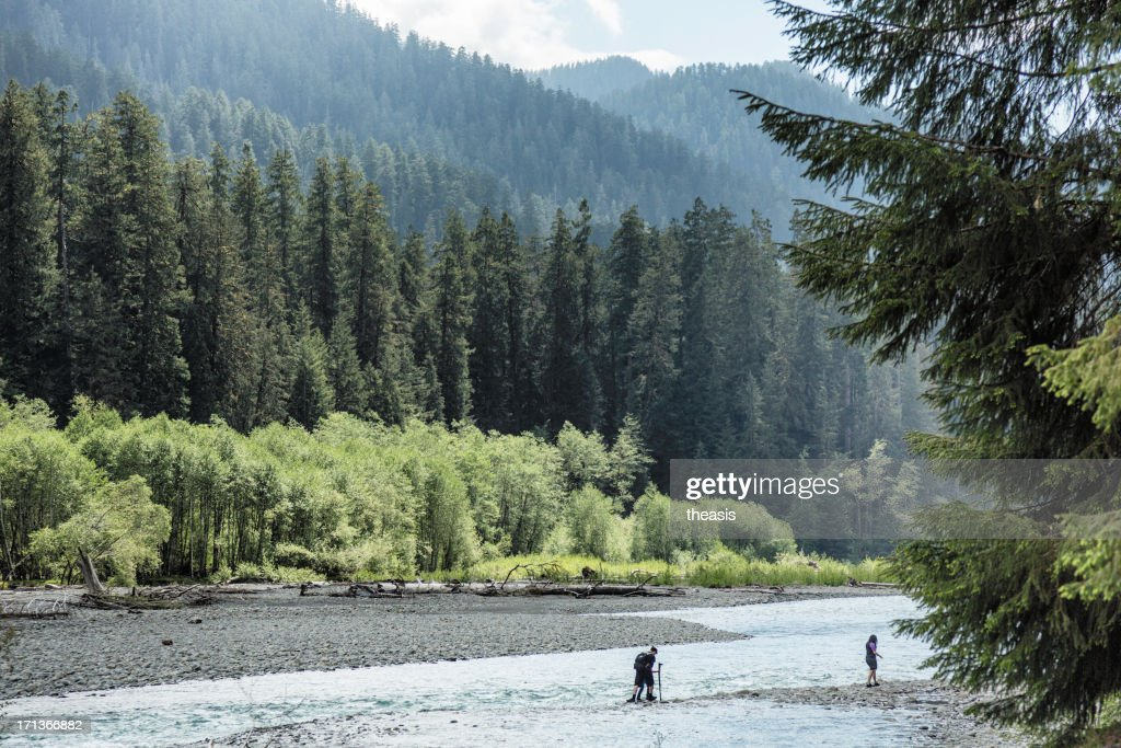 Hikers Crossing the Hoh River : Stock Photo