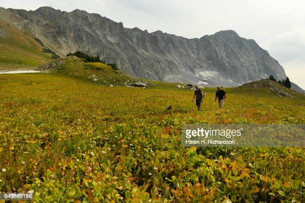 WILDERNESS CO SEPTEMBER 6 Hikers David Bossert front and George Nick head back to their camp site near Capitol Lake with the massive Capitol Peak...