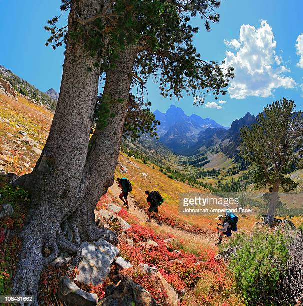 Hikers in Grand Teton National Park, Wyoming