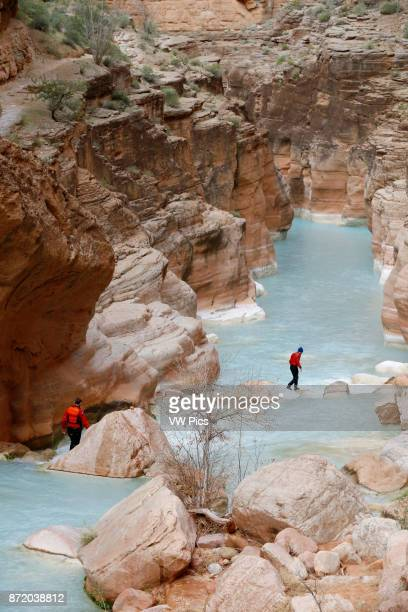 Hikers in Havasu Creek Grand Canyon National Park Arizona United States