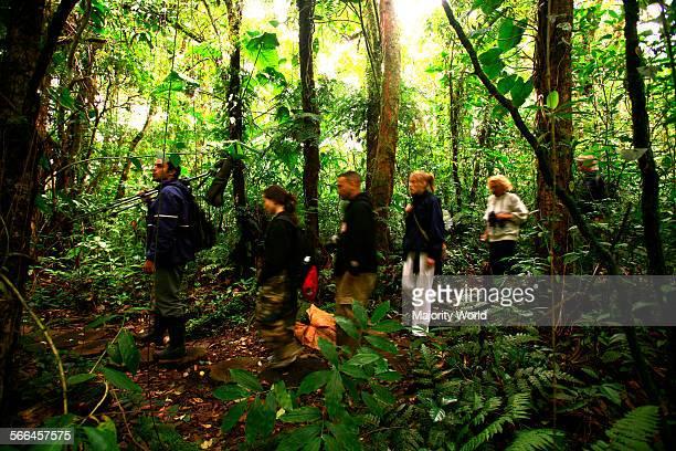 Hikers in Monteverde cloud forest Costa Rica