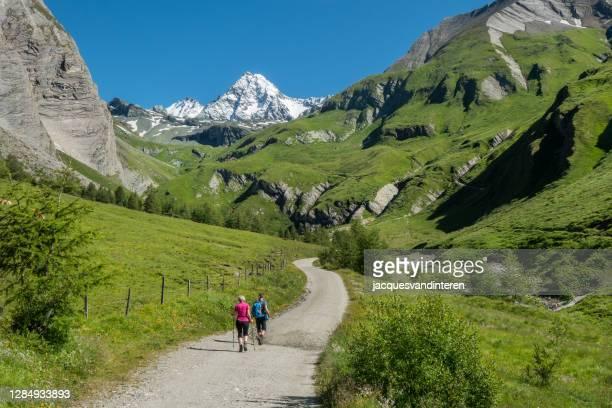 チロルアルプスのハイカーで、オーストリアで最も高い山であるグロスグロックナーを背景にしています。 - リエンツ ストックフォトと画像