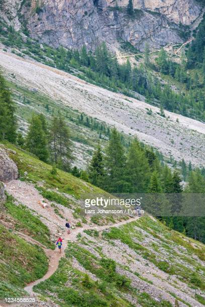 hikers on a footpath in the alps - foot bone stock pictures, royalty-free photos & images