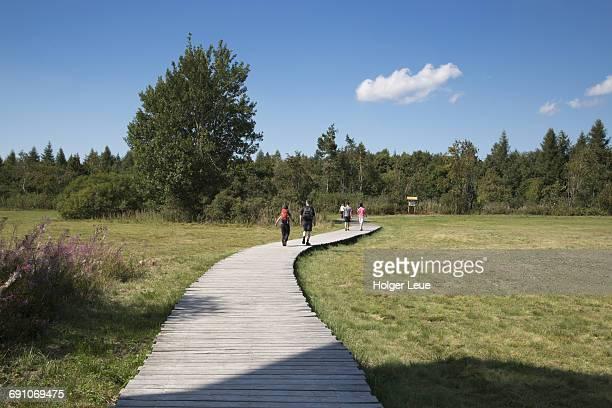 hikers on boardwalk through black moor - ヘッセン州 ストックフォトと画像