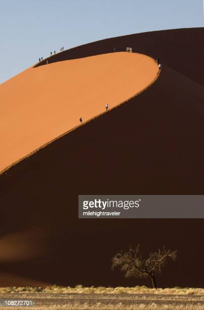 Hikers on Sand Dunes, Namib Desert