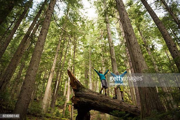 hikers rejoicing in a temperate rainforest - big beautiful women stock pictures, royalty-free photos & images