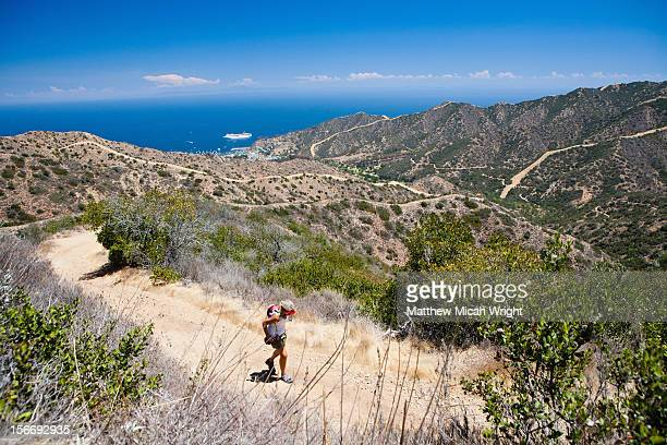 hikers trek the hermit gulch trail. - catalina island stock photos and pictures