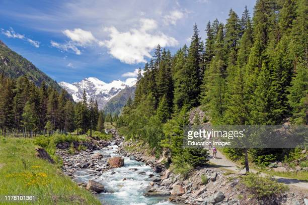 Hikers walking in the Gran Paradiso National Park or Parco nazionale del Gran Paradiso, with a view up the Torrente Valnontey to mountains.