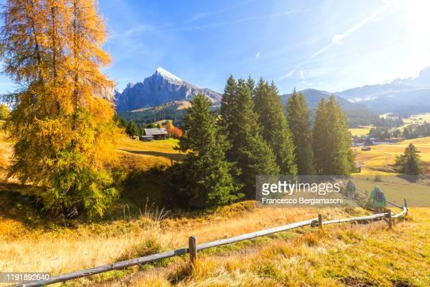 hikers walks near a lonely huts in autumn in the dolomites alps - italia stockfoto's en -beelden