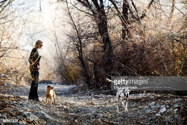 hikers with dog - lowenbach stock photos and pictures