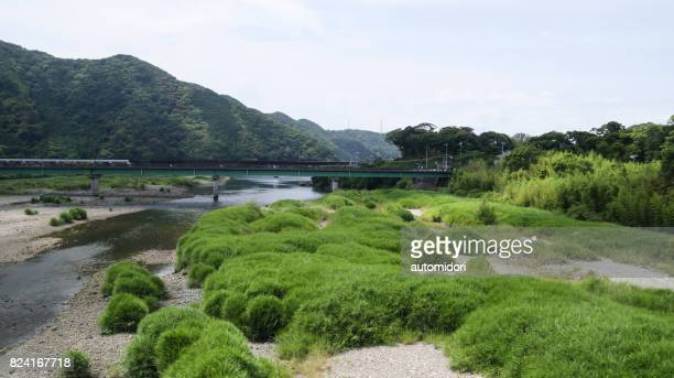 hiki river in summer 2017 - präfektur wakayama stock-fotos und bilder