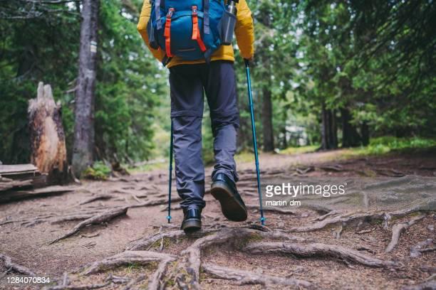 秋に一人でハイキング - トレイル表示 ストックフォトと画像