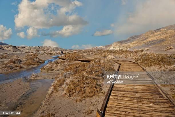 Hiking Along the Salt Creek Boardwalk