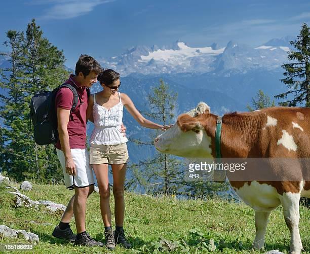 Hiking Couple, Dairy Cow