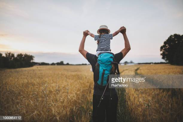 wandern familie in eine goldene wiese - wandern stock-fotos und bilder