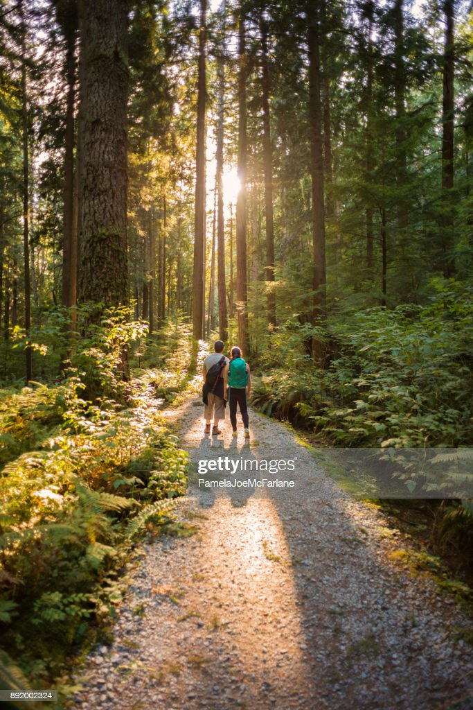 Hiking Father and Daughter Exploring Sunlit Forest Trail in Canada : Stock Photo