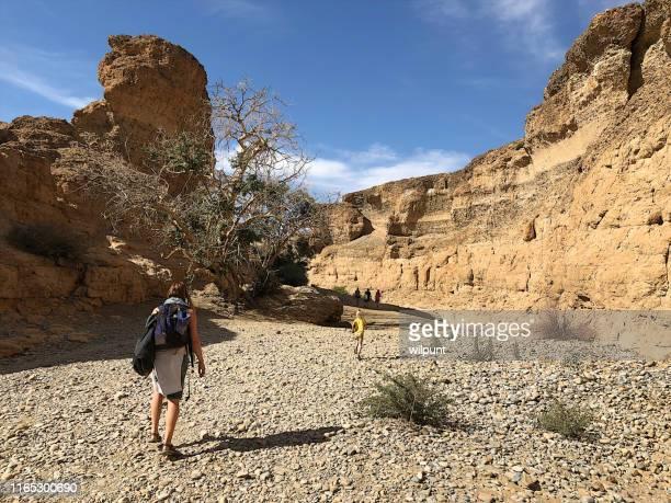 渓谷の乾いた川のベッドでのハイキング - セスリエム ストックフォトと画像