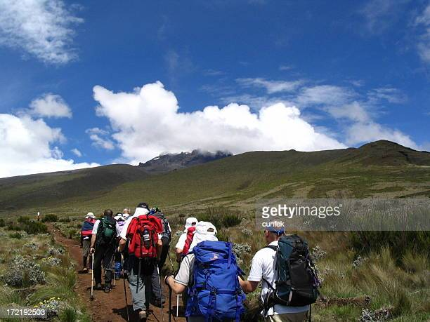 hiking in africa - kilimanjaro stock photos and pictures
