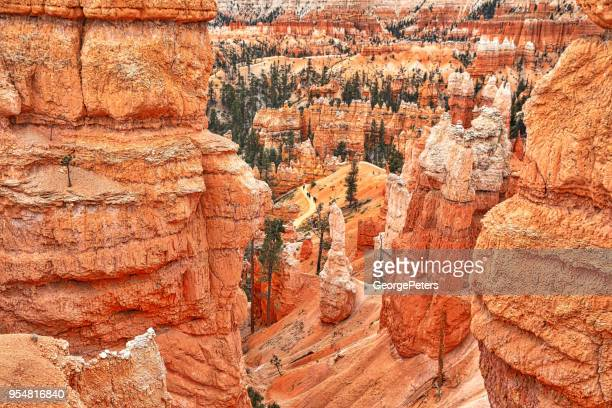 Hiking in Bryce Canyon National Park. Queens Garden Trail.