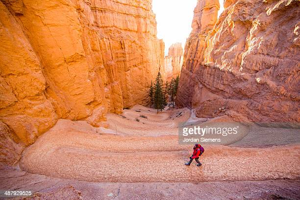 hiking in bryce canyon - bryce canyon stock pictures, royalty-free photos & images