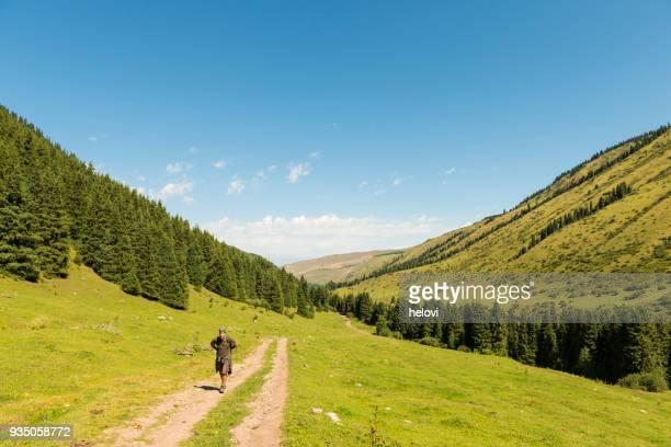 キルギスタンの緑の風景でのハイキング - 中央アジア ストックフォトと画像