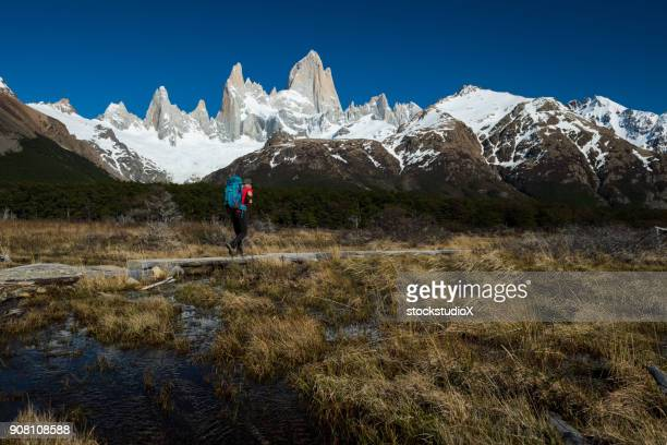 hiking in los glaciares national park - chalten stock pictures, royalty-free photos & images