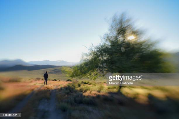 hiking in pampas steppe, patagonia - radicella stock pictures, royalty-free photos & images