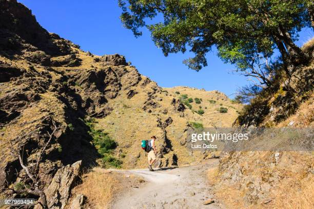 Hiking in Sierra Nevada
