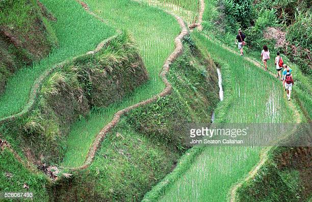 Hiking in the Banaue Rice Terraces