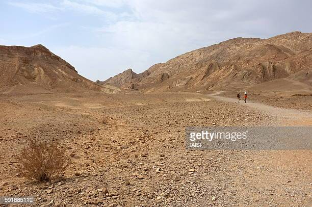 Hiking in the Negev desert, Ramon crater