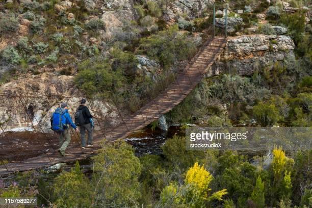 wandern in der provinz westkap, südafrika - hängebrücke stock-fotos und bilder