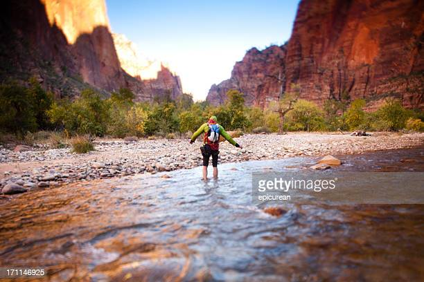 hiking in zion national park - zion national park stock pictures, royalty-free photos & images