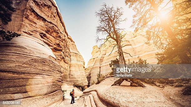 hiking new mexico - new mexico stock pictures, royalty-free photos & images