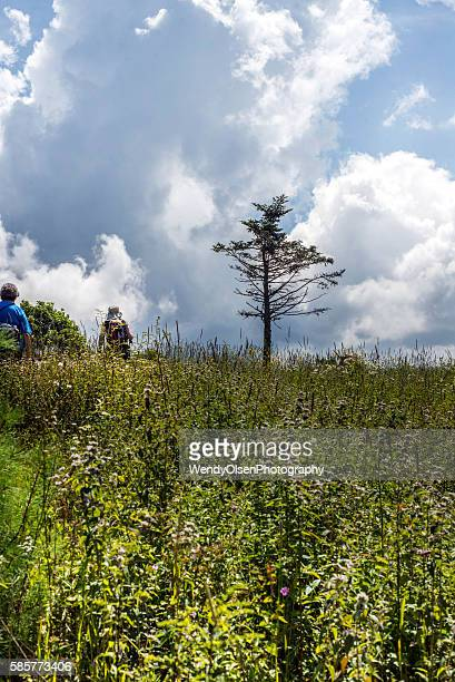 hiking on a summer day with thunder clouds - olsen foto e immagini stock