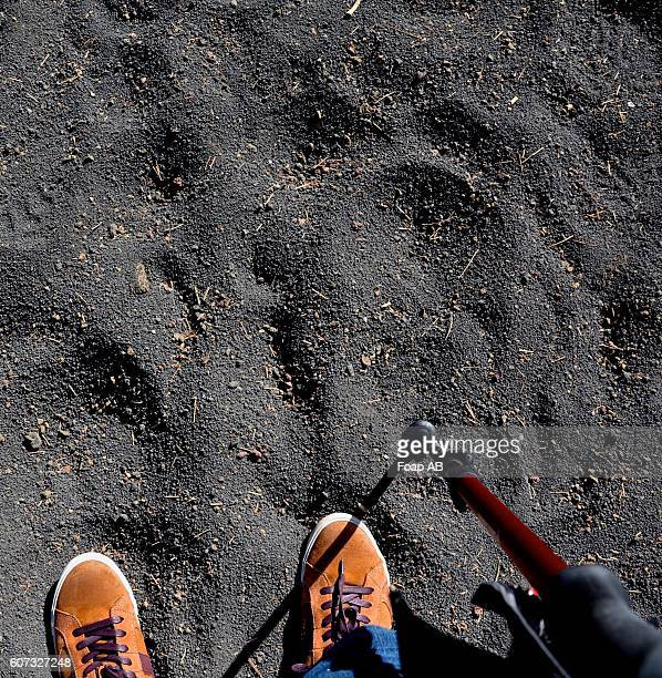 hiking on sand in a lava field - low section stock pictures, royalty-free photos & images