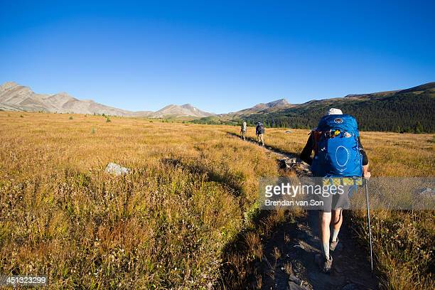 Hiking on the skyline trail of Jasper National Park.