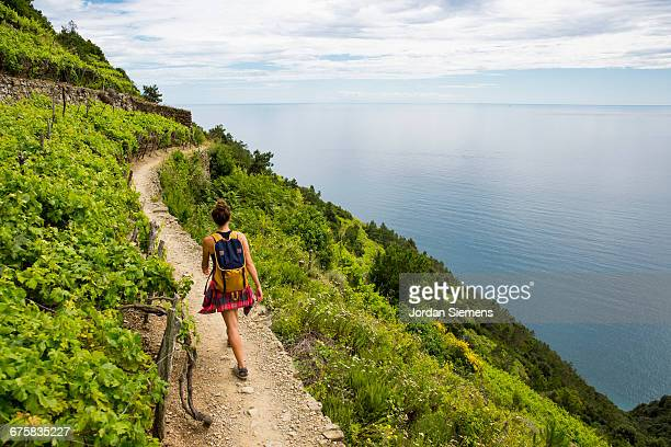 Hiking past vinyards along the Cinque Terre