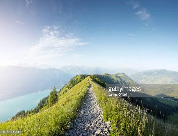 hiking path along alpine ridge line, augstmatthorn, switzerland - weg stock-fotos und bilder