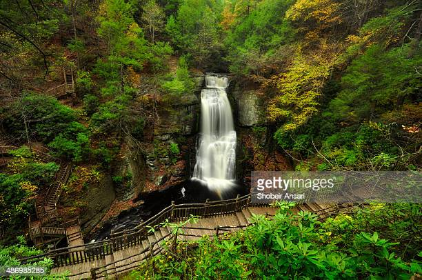 hiking path in bushkill falls, pa. - pocono mountains stock pictures, royalty-free photos & images