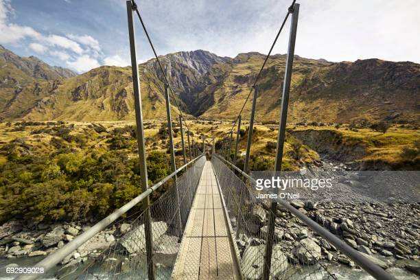 Hiking path suspension bridge in New Zealand landscape