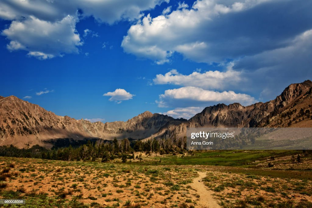 Hiking path through Ants Basin in White Cloud Wilderness along trail to Born Lakes, central Idaho in summer : Stock-Foto