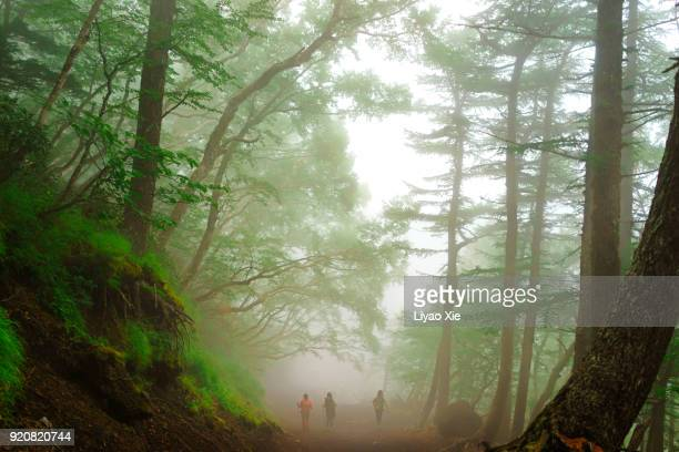 hiking - liyao xie stock pictures, royalty-free photos & images