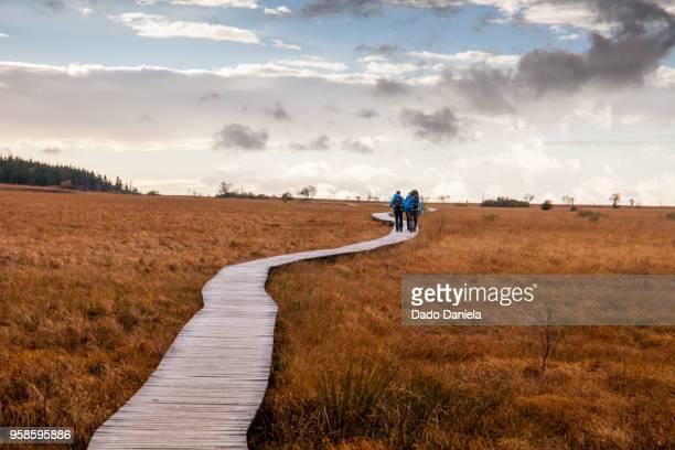 hiking - belgië stockfoto's en -beelden