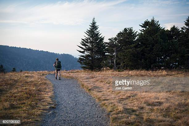 hiking the appalachian trail on roan mountain - appalachian trail stock pictures, royalty-free photos & images