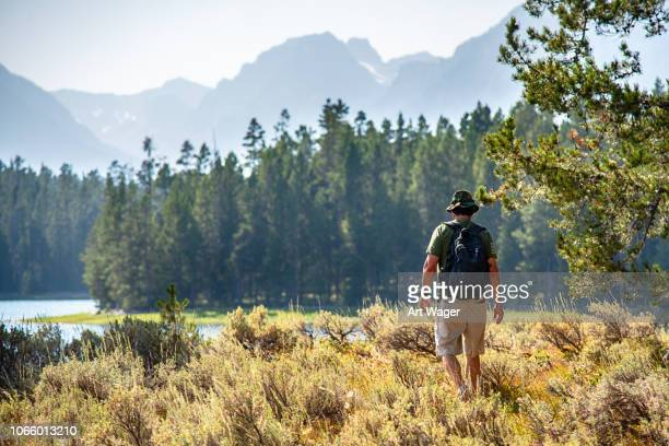 hiking the wilderness - grand teton national park stock pictures, royalty-free photos & images