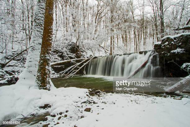 hiking through a beautiful winter stream and snow covered trees - finger lakes stock pictures, royalty-free photos & images