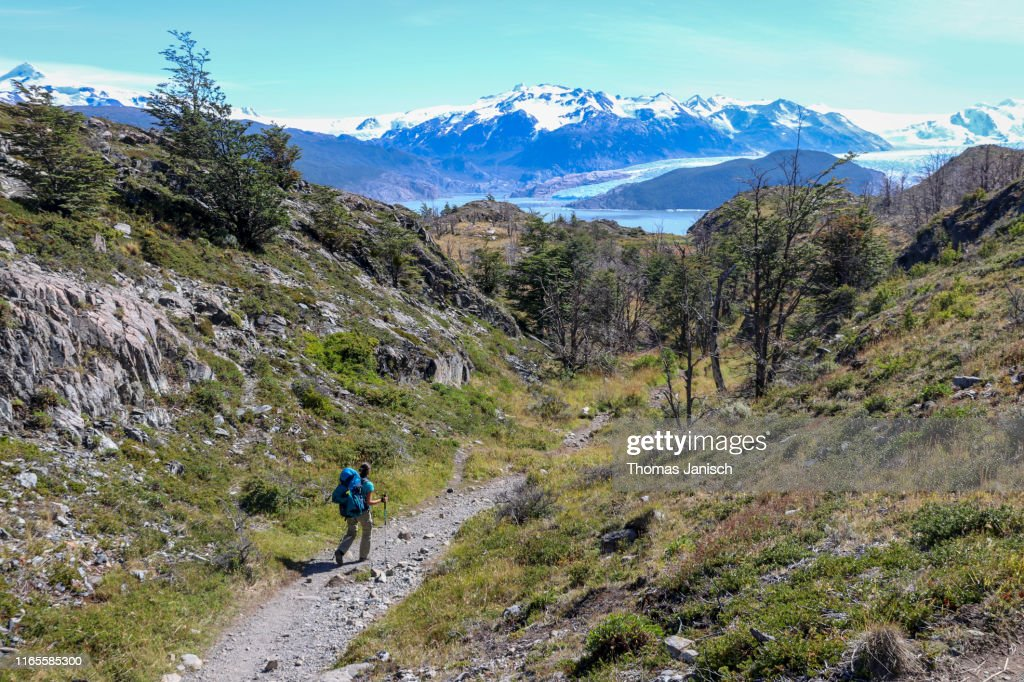 Hiking towards Glacier Grey, Torres del Paine National Park, Patagonia, Chile : Stock Photo